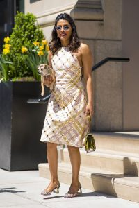 NEW YORK, NY - MAY 03:  Priyanka Chopra is seen wearing a Bottega Veneta  dress with Christian Louboutin shoes in Chelsea on May 3, 2018 in New York City.  (Photo by Gotham/Getty Images)